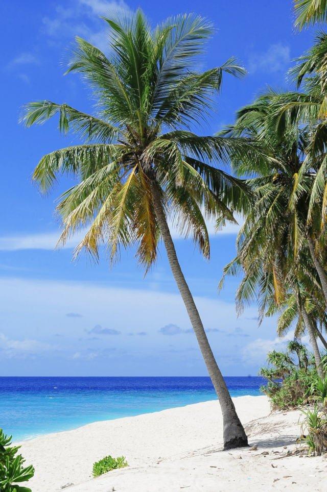 atoll-2178747_1280